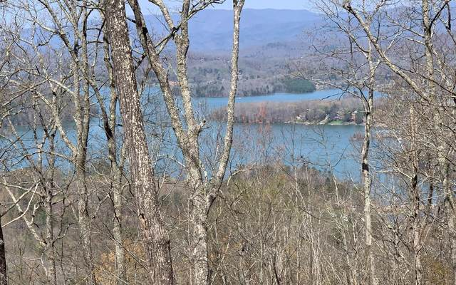 55 Eagles View (Lot), Hayesville, NC 28904 (MLS #305751) :: Path & Post Real Estate