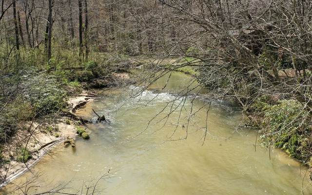 LOT 3 Old Mill Pond Rd, Mineral Bluff, GA 30559 (MLS #305774) :: RE/MAX Town & Country