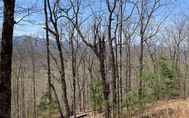 LOT 7 Deer Valley, Warne, NC 28909 (MLS #305874) :: Path & Post Real Estate