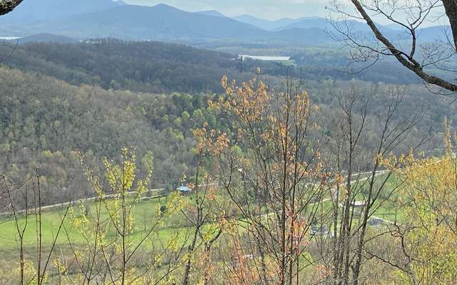 LOT 9 Double Knobs, Hayesville, NC 30546 (MLS #305887) :: Path & Post Real Estate