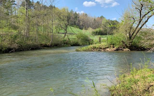 LOT 5 River Escape, Cherry Log, GA 30540 (MLS #305911) :: RE/MAX Town & Country