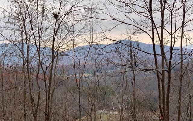 LOT 8 Woods Of Hunter, Hayesville, NC 28904 (MLS #305919) :: Path & Post Real Estate