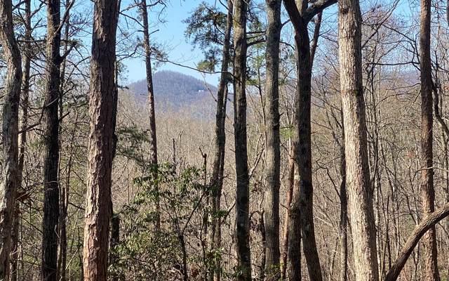 LOT19 Cohutta Overlook Trl, Blue Ridge, GA 30513 (MLS #305927) :: Path & Post Real Estate
