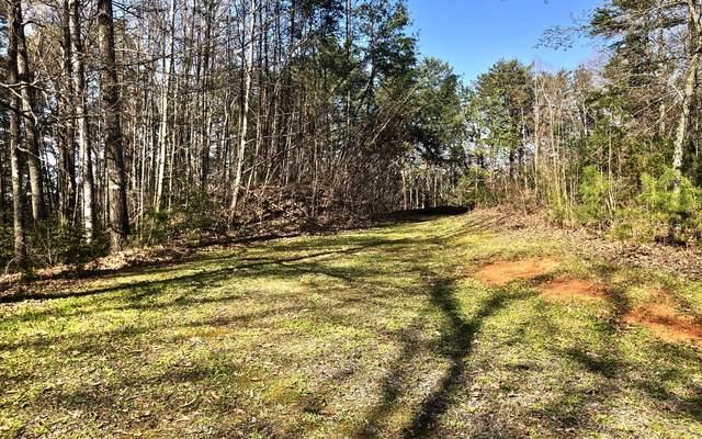 TBD Clayton Drive, Brasstown, NC 28902 (MLS #305932) :: Path & Post Real Estate