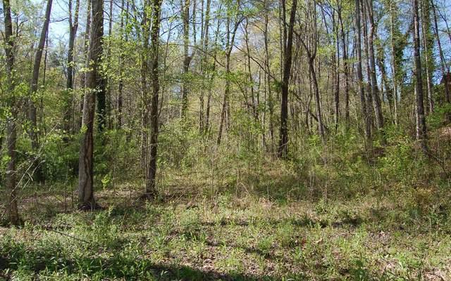 LT 14 Chatuge Village, Hayesville, NC 28904 (MLS #305979) :: Path & Post Real Estate