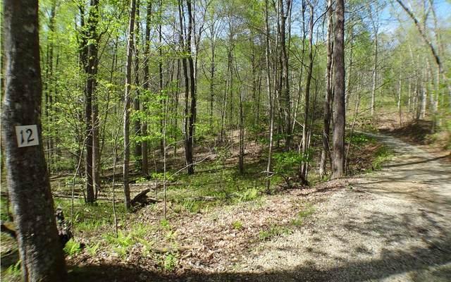 #12 Deweese Rd, Topton, NC 28781 (MLS #305984) :: Path & Post Real Estate