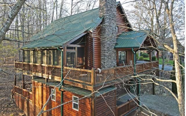 1343 Highland Trace, Blairsville, GA 30512 (MLS #305989) :: Path & Post Real Estate