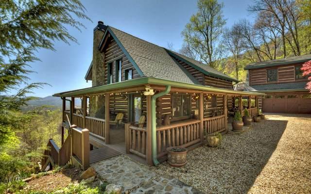 857 Lakeview Drive, Blue Ridge, GA 30315 (MLS #306005) :: Path & Post Real Estate