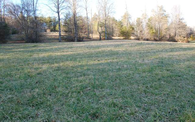 50A Licklog Ridge, Hayesville, NC 28904 (MLS #306025) :: RE/MAX Town & Country
