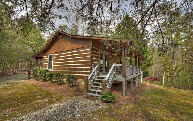 33 White Pine Acres, Blue Ridge, GA 30513 (MLS #306042) :: RE/MAX Town & Country