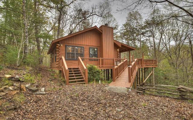 119 Little Beaver Drive, Cherry Log, GA 30522 (MLS #306048) :: RE/MAX Town & Country