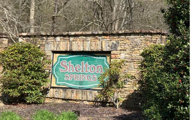 21 N Shelton Springs, Hayesville, NC 28904 (MLS #306049) :: RE/MAX Town & Country