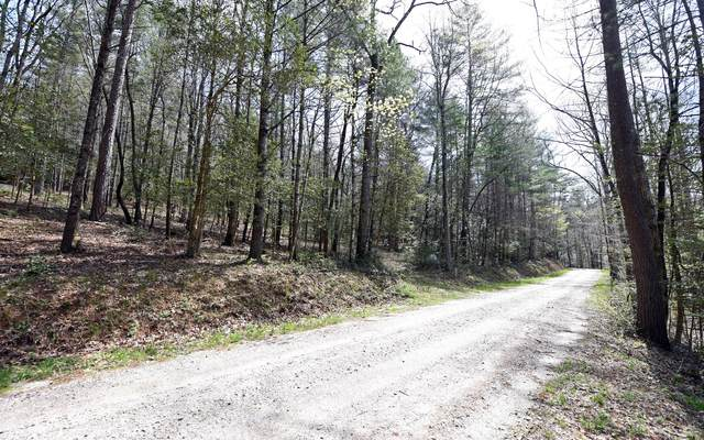 5.7AC Canada Creek Road, Blairsville, GA 30512 (MLS #306076) :: RE/MAX Town & Country