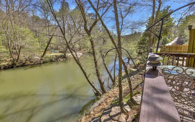 455 Ogden Drive, Ellijay, GA 30540 (MLS #306079) :: RE/MAX Town & Country