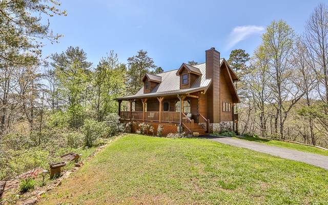 1201 Turniptown Road, Ellijay, GA 30536 (MLS #306093) :: RE/MAX Town & Country