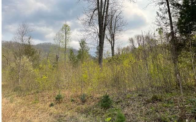 L18N Ridge High Meadows, Hayesville, NC  (MLS #306221) :: Path & Post Real Estate