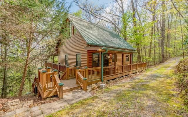 879 Millstone Mountain L, Blue Ridge, GA 30513 (MLS #306258) :: Path & Post Real Estate