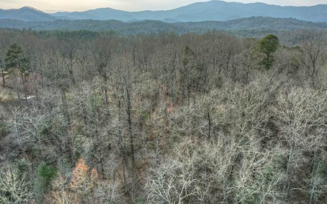 135 Smith Road, Copperhill, TN 37317 (MLS #306262) :: RE/MAX Town & Country