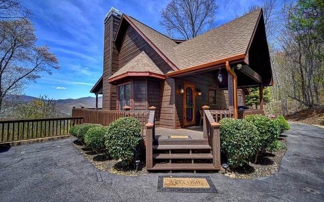7029 Black Bear Trail, Hiawassee, GA 30546 (MLS #306356) :: Path & Post Real Estate
