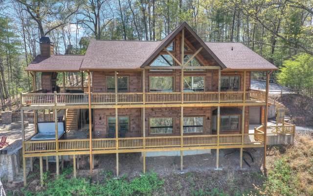 109 Little Creek Overloo, Blue Ridge, GA 30513 (MLS #306383) :: Path & Post Real Estate