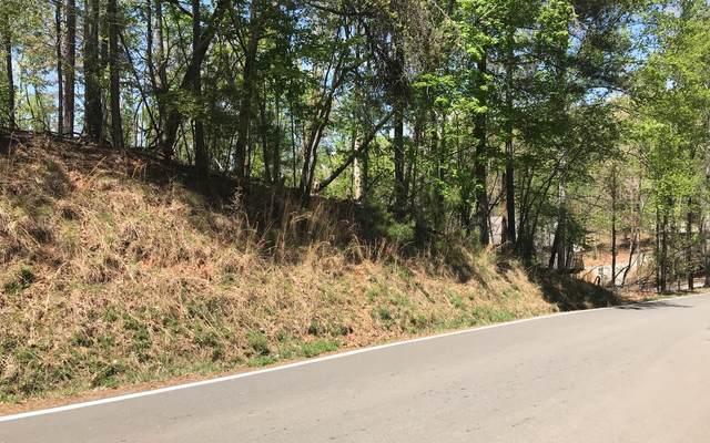 0 Frigate Drive, Ellijay, GA 30540 (MLS #306416) :: Path & Post Real Estate