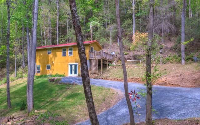 861 Little Rock Creek, Cherry Log, GA 30522 (MLS #306488) :: RE/MAX Town & Country