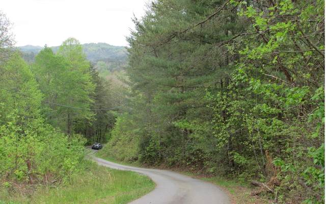 5.96 Mountain Rivers Lane, Mineral Bluff, GA 30559 (MLS #306492) :: RE/MAX Town & Country