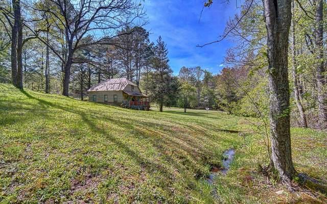 6256 Cutcane Rd, Mineral Bluff, GA 30555 (MLS #306531) :: RE/MAX Town & Country