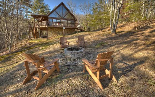 324 Copperhead Trail, Mineral Bluff, GA 30559 (MLS #306547) :: RE/MAX Town & Country