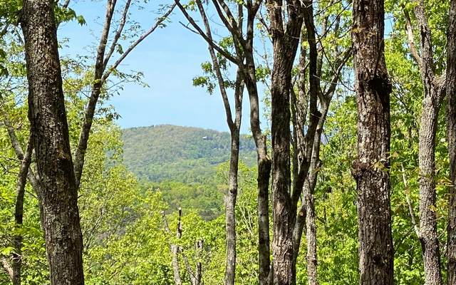 LOT11 Price Rd, Blue Ridge, GA 30513 (MLS #306548) :: Path & Post Real Estate