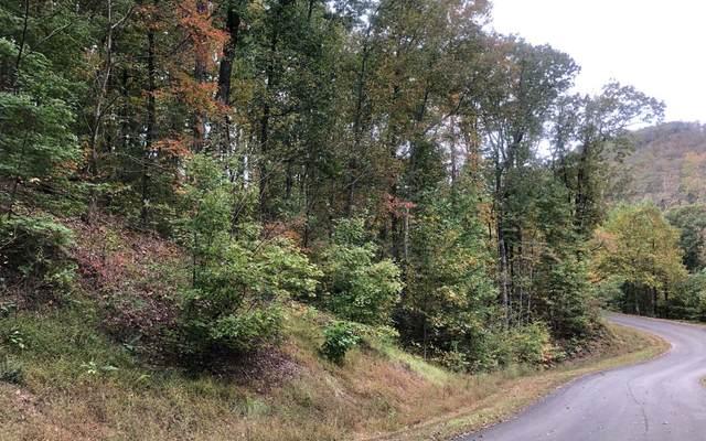 LT 38 Mountain Falls Loop, Ellijay, GA 30540 (MLS #306582) :: Path & Post Real Estate