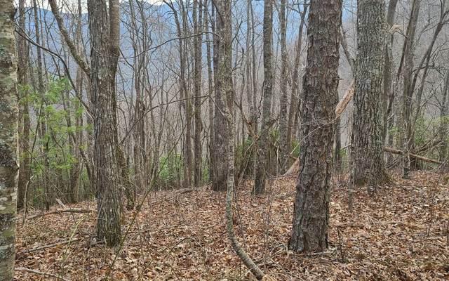 LOT O Horseshoe Ridge, Franklin, NC 28734 (MLS #306593) :: RE/MAX Town & Country