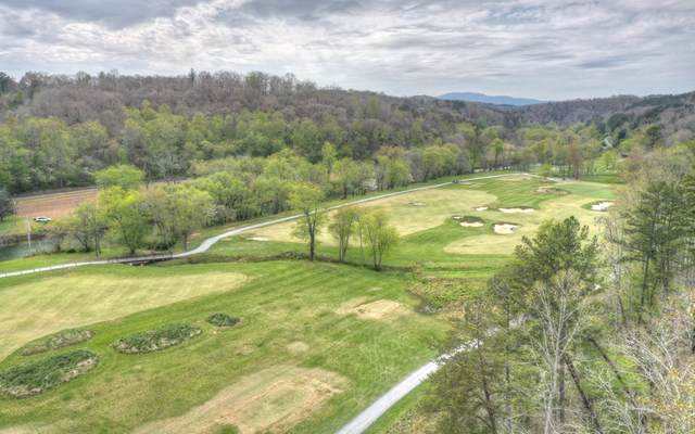 L 150 Old Toccoa Farm, Mineral Bluff, GA 30559 (MLS #306616) :: RE/MAX Town & Country