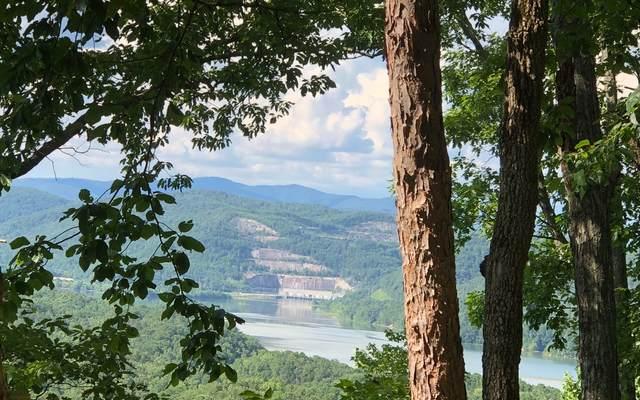 104 Hopewell Drive Ne, Ranger, GA 30734 (MLS #306625) :: RE/MAX Town & Country