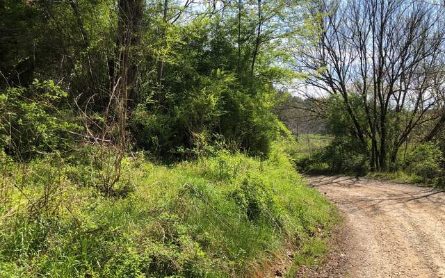 800 Marion Adams, Murphy, NC 28906 (MLS #306676) :: RE/MAX Town & Country