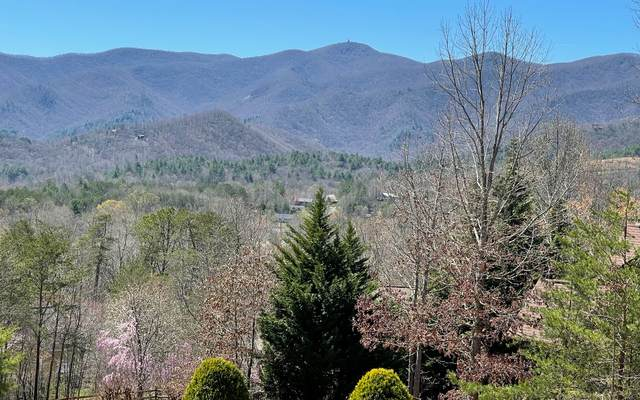 2368 Brown Heights Road, Hiawassee, GA 30546 (MLS #306707) :: RE/MAX Town & Country