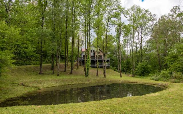 35 Rambling Waters Dr, Marble, NC 28905 (MLS #306730) :: RE/MAX Town & Country
