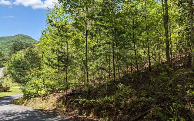 LOT 7 Echota Trail, Hayesville, NC 28904 (MLS #306731) :: RE/MAX Town & Country