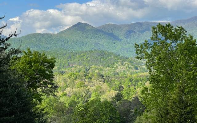 LT 14 Brown Haven Heights, Hiawassee, GA 30546 (MLS #306732) :: RE/MAX Town & Country
