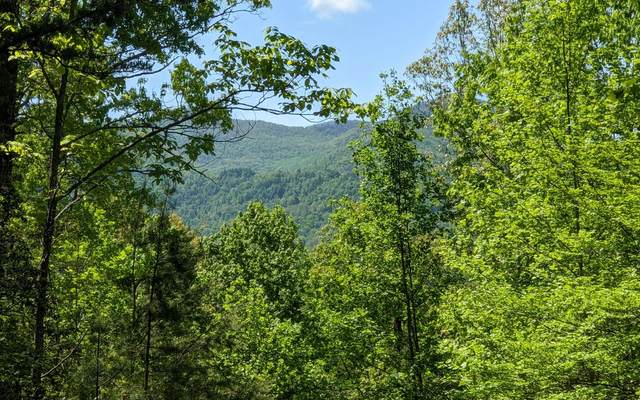 LOT 3 Echota Trail, Hayesville, NC 28904 (MLS #306734) :: RE/MAX Town & Country