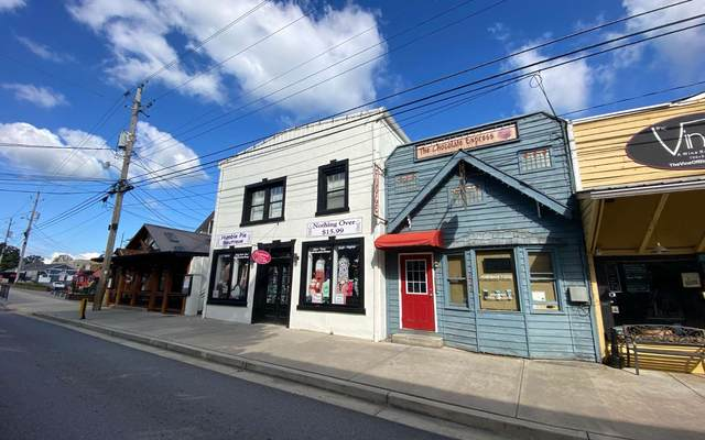 636 East Main Street, Blue Ridge, GA 30513 (MLS #306741) :: RE/MAX Town & Country
