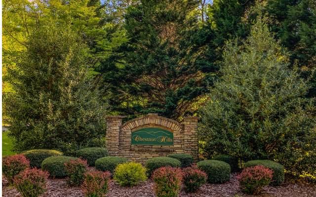 LT 10 Chestnut Hills, Blue Ridge, GA 30513 (MLS #306749) :: RE/MAX Town & Country