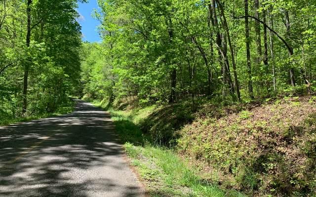 LT 11 Sunshine Mountain, Blue Ridge, GA 30513 (MLS #306752) :: RE/MAX Town & Country