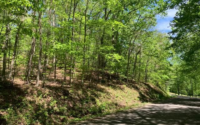 LT 8B Sunshine Mountain, Blue Ridge, GA 30513 (MLS #306757) :: RE/MAX Town & Country