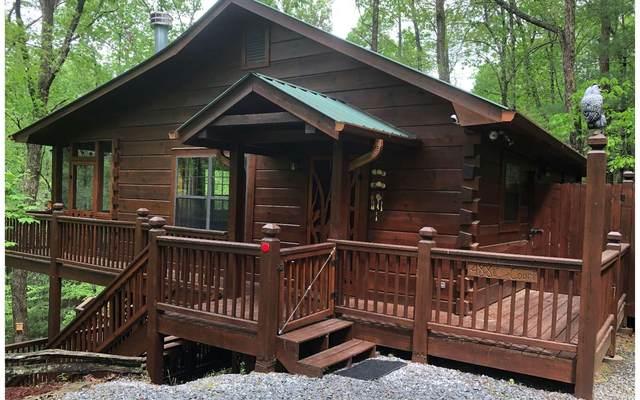 488 Arrowhead Pass, Cherry Log, GA 30522 (MLS #306764) :: RE/MAX Town & Country