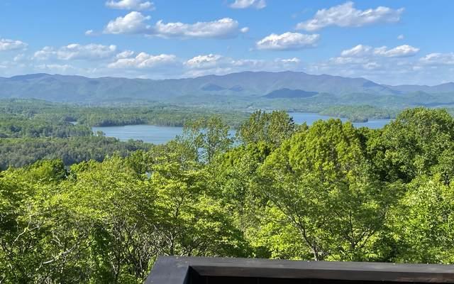 1029 Frog Pond, Hiawassee, GA 30546 (MLS #306793) :: RE/MAX Town & Country