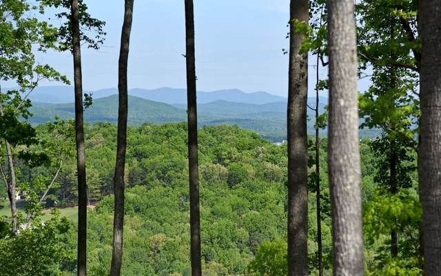 LT 95 Highland Park, Blairsville, GA 30512 (MLS #306801) :: RE/MAX Town & Country