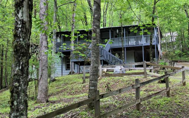 4704 Mitchell Cove, Hiawassee, GA 30546 (MLS #306813) :: RE/MAX Town & Country