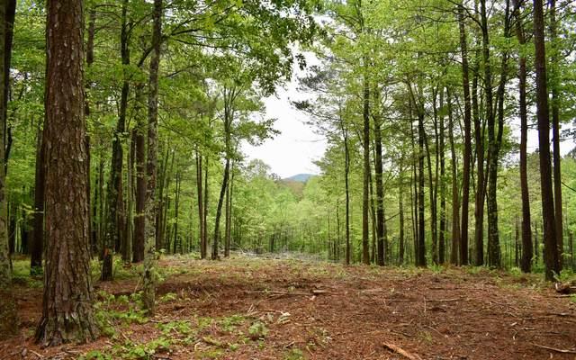 LT 2 Country Road, Talking Rock, GA 30536 (MLS #306841) :: Path & Post Real Estate
