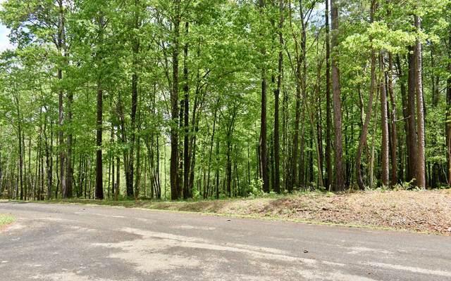 LT 3 Country Road, Talking Rock, GA 30536 (MLS #306842) :: Path & Post Real Estate